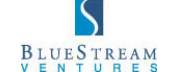 BlueStream Ventures logo