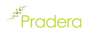 Pradera Turkish Retail logo