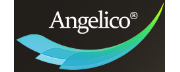 Angelico Ventures logo