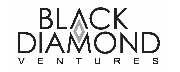 Black Diamond Ventures logo