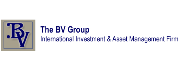 BV Group logo