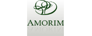 Amorim Global Investors logo