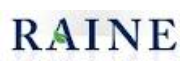 Raine Group logo