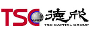 TSC IT Venture Management logo