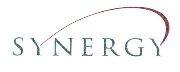Synergy Ventures logo