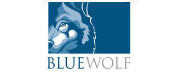 Blue Wolf Capital Partners logo