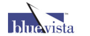 Blue Vista Capital Partners logo
