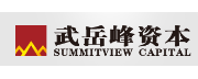 SummitView Capital logo