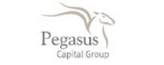 Pegasus Capital Group logo