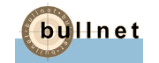 Bullnet Capital logo