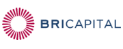 Bricapital logo