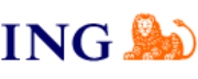 ING Real Estate Investment Management logo